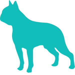 Logo1-f-zelena
